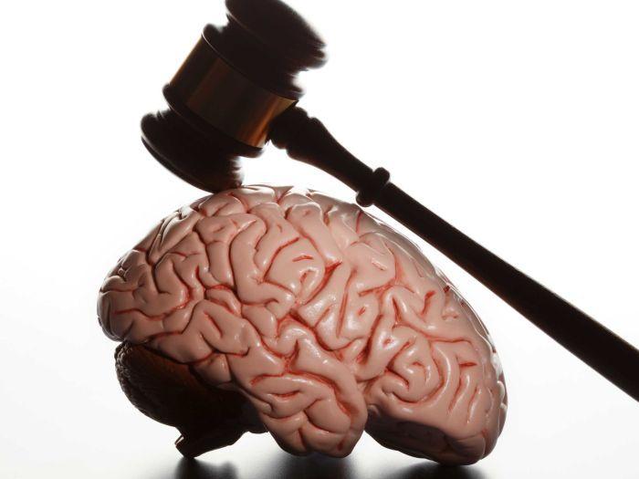Neuroderecho: Definición y ámbitos de aplicación, de María Isabel Cornejo